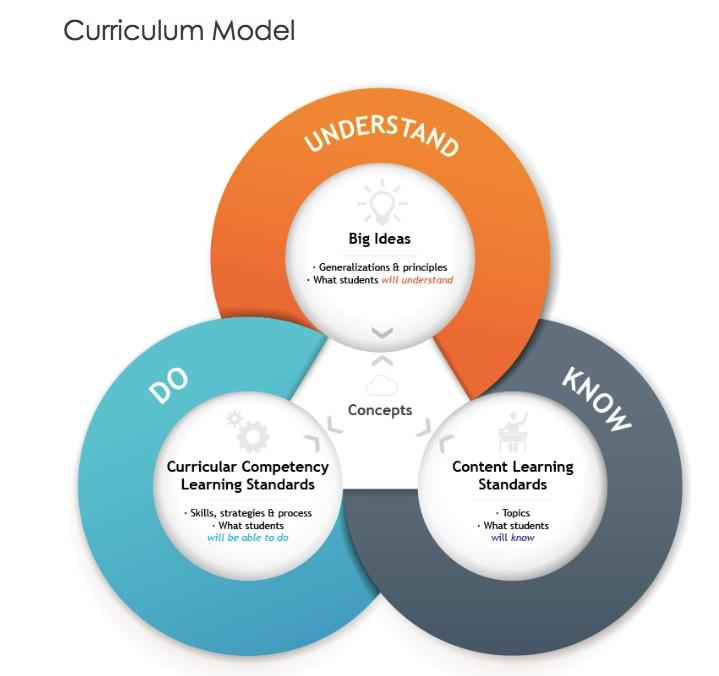 curriculum-model